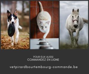 Blanc et Sombre Gris Simple Montage Publication Facebook-5